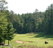 Timberstone Golf Course in Michigan - hole 2