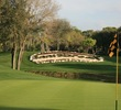 Copperhead golf course - Innisbrook Resort