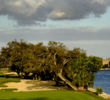 North Palm Beach C.C. golf course