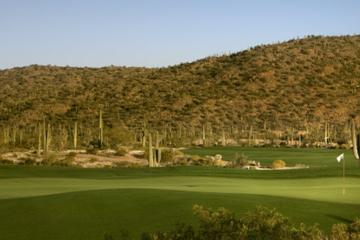 Ritz-Carlton GC: Saguaro #9