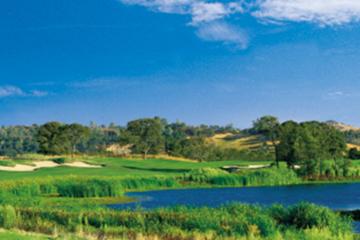 Saddle Creek Resort