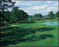 Bay Tree Golf Plantation - Green