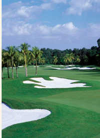 Trump National Doral Miami - Red Tiger Course