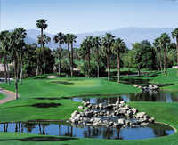 Challenger at Palm Valley CC: #8