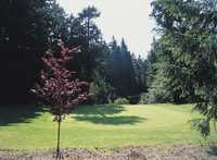 Championship at Meadow Park GC: #13