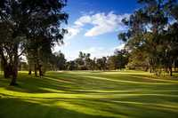 Commercial Golf Resort Albury: #1