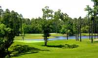 Tupelo Bay Golf Complex - Executive: #7