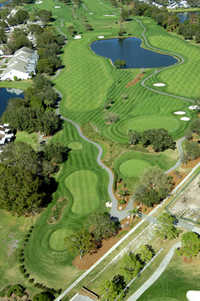 Aerial view of Meadows nine