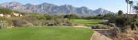 The Views GC at Oro Valley: Panorama