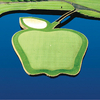 Apple Tree GC: #17