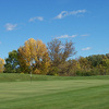 Bulrush GC: #1