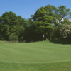 Wildwood GCC - Woodland: #1