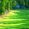 Green at Golden Horseshoe GC