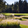 Pine Meadow GC: #15