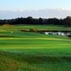 Cypress Head GC: #9