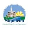 Napoleon Municipal Golf Course - Public Logo