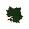 Sycamore Golf Club Logo