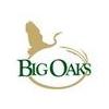 Big Oaks Golf Course - Public Logo