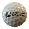 Ballinger Park Golf Club - Public Logo