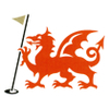 Borth and Ynyslas Golf Club Logo