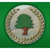 Old Conna Golf Club Logo