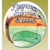 Magnolia Springs Golf Logo