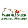Wadi Al Saeed Golf Club Logo