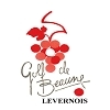 Beaune Levernois Golf Club - 18 Holes Course Logo