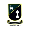 Ballinascorney Golf Club Logo