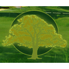 Meridian Golf Par 3 Golf Club Logo