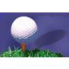 SkyRidge Golf Course Logo