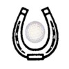 Dudmoor Farm Riding School & Golf Course Logo