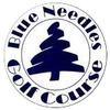 Blue Needle Golf Course - Public Logo