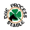 Due Process Stable - Private Logo