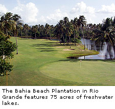 Bahia Beach Plantation