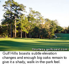 Gulf Hills