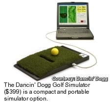 Dancin Dogg Golf Simulator