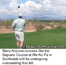 Saguaro Course at We-Ko-Pa - Desert Clears